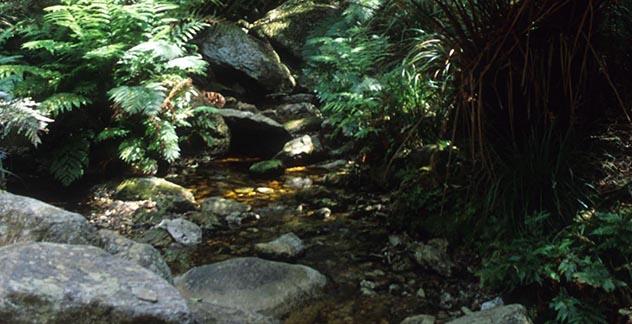 Marloth Nature Reserve