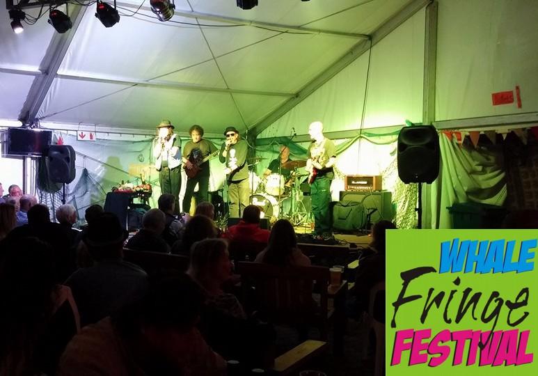 whale fringe festival