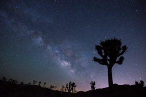 night_sky_18868103355