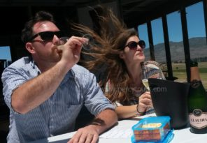 Wine Tours with Percy Tours in Hermanus - Copy