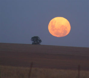 moonrise-wavemaker